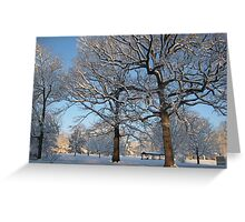 Feb. 19 2012 Snowstorm 127 Greeting Card