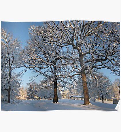 Feb. 19 2012 Snowstorm 127 Poster