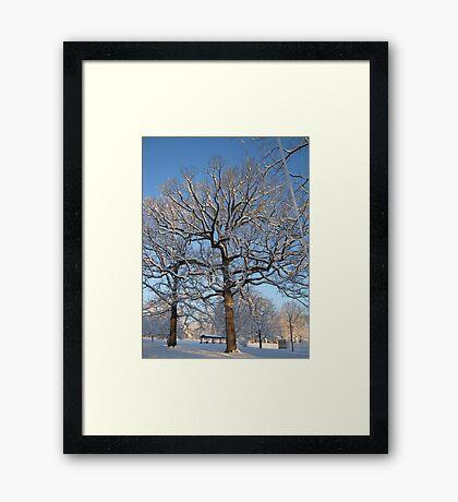 Feb. 19 2012 Snowstorm 128 Framed Print