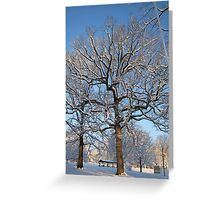 Feb. 19 2012 Snowstorm 128 Greeting Card