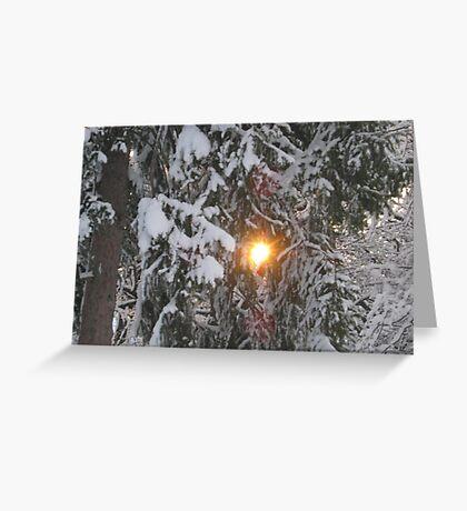 Feb. 19 2012 Snowstorm 129 Greeting Card