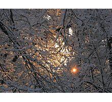 Feb. 19 2012 Snowstorm 130 Photographic Print