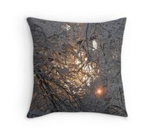 Feb. 19 2012 Snowstorm 130 Throw Pillow