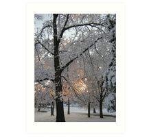Feb. 19 2012 Snowstorm 132 Art Print