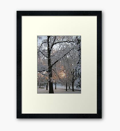 Feb. 19 2012 Snowstorm 132 Framed Print