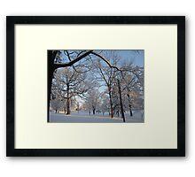 Feb. 19 2012 Snowstorm 133 Framed Print