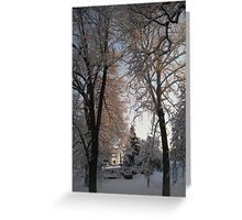 Feb. 19 2012 Snowstorm 135 Greeting Card
