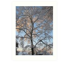 Feb. 19 2012 Snowstorm 136 Art Print