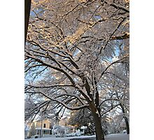 Feb. 19 2012 Snowstorm 137 Photographic Print