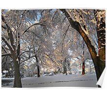 Feb. 19 2012 Snowstorm 137 Poster