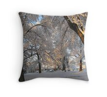 Feb. 19 2012 Snowstorm 137 Throw Pillow
