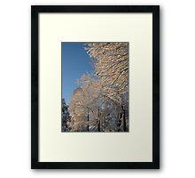 Feb. 19 2012 Snowstorm 138 Framed Print