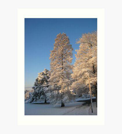 Feb. 19 2012 Snowstorm 140 Art Print