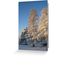 Feb. 19 2012 Snowstorm 140 Greeting Card
