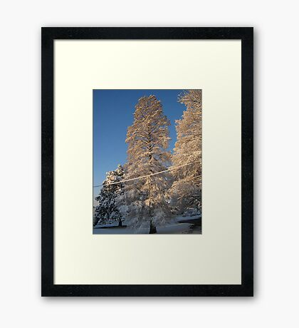 Feb. 19 2012 Snowstorm 141 Framed Print