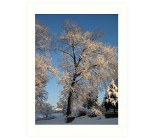 Feb. 19 2012 Snowstorm 143 Art Print
