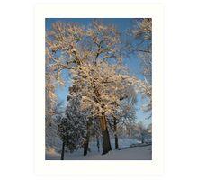 Feb. 19 2012 Snowstorm 144 Art Print