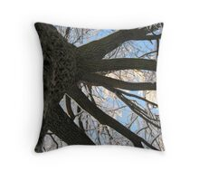 Feb. 19 2012 Snowstorm 146 Throw Pillow