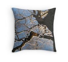 Feb. 19 2012 Snowstorm 150 Throw Pillow