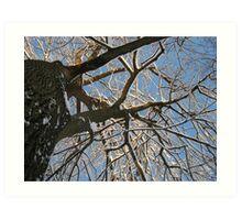 Feb. 19 2012 Snowstorm 158 Art Print
