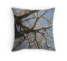 Feb. 19 2012 Snowstorm 158 Throw Pillow