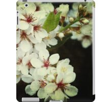 Summer Blossoms iPad Case/Skin