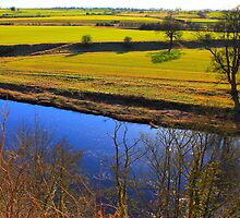 Looking South West across the River Tees from Gainford . by Ian Alex Blease