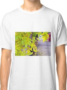 Ash with yellow leaves and pavement tiles Classic T-Shirt