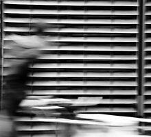 Move city by donato radatti