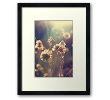 Day 220 - 15th February 2012 Framed Print