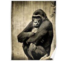 I Am A Gorilla Poster