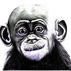 Baby Bonobo by Margaret Sanderson