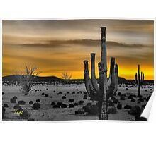Golden Desert Scene Poster