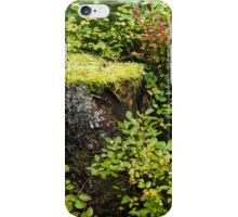 Greenery Round the Stump iPhone Case/Skin