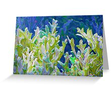 Coral Forest Greeting Card