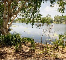 Ross River, Townsville, from Riverside by Chris Cohen