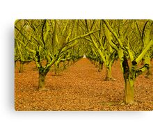 Into The Green Canvas Print