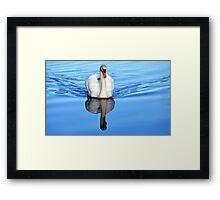 Blue Mirror Swan Framed Print