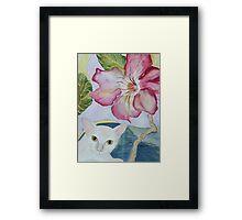 My Desert Rose - Adenium Framed Print