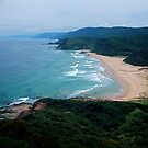 Garie Beach, Royal National Park  by Andrew  MCKENZIE