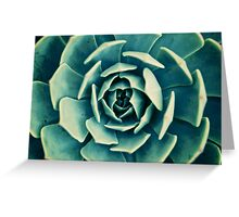 Succulent Arms Greeting Card