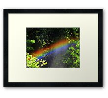 Small Rainbow Framed Print
