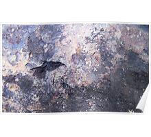 Blackbird in Storm Poster