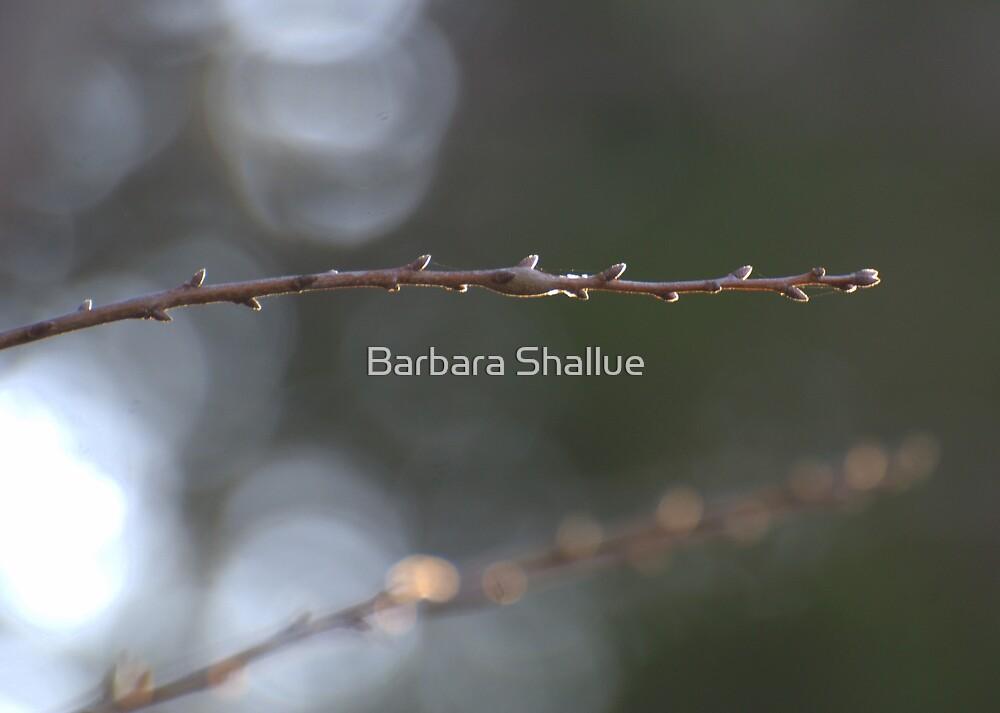 Arlo's Stick (color) by Barbara Shallue
