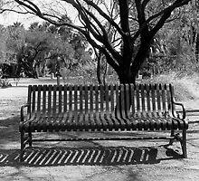 Agua Caliente Park Bench by James2001