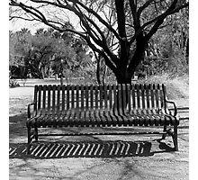 Agua Caliente Park Bench Photographic Print