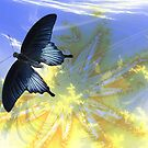 Fly Butterfly Fly by NewfieKeith