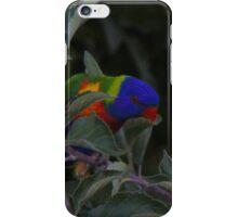 iphone bird skin 001 iPhone Case/Skin