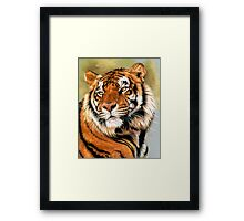 Power and Grace Framed Print
