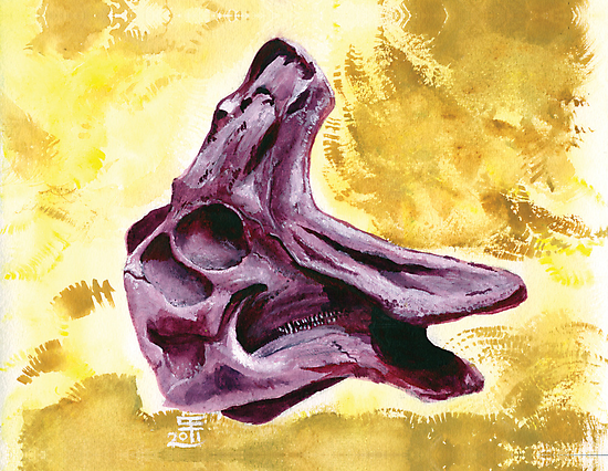 Lambeosaurus Skull by cubelight